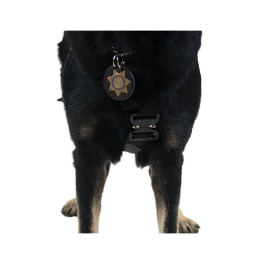 CMC K9 Proseries® Rappel Harness