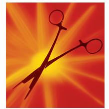 Kelly Forceps & Bandage Scissors Combination Instrument