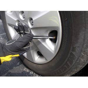 TheFireStore Tire Deflator Tool with Combo Valve and Standard Core Ends