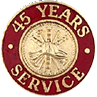 Hook-Fast 45 Years of Service Pin